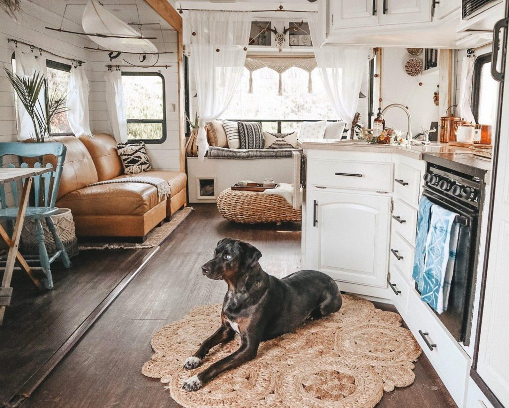 pet policy RV rental